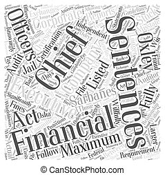 What is the Sarbanes Oxley Act Word Cloud Concept