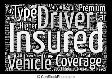 What You May Not Know About Automobile Insurance text...