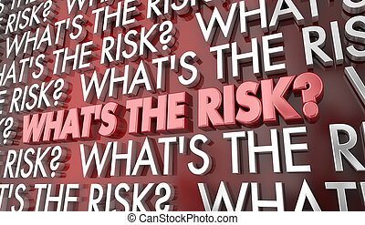 Whats the Risk Potential Problems Words 3d Illustration