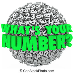 What's Your Number Question Sphere Credit Score Budget Limit...
