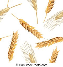 wheat and rye ears seamless pattern