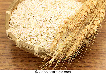 wheat and wheat ear - I put wheat in a colander and attached...