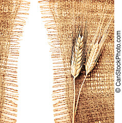 Wheat border over canvas background, harvest time, ...