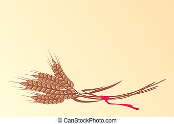 Wheat - bunch of ripe wheat ears with red ribbon, vector
