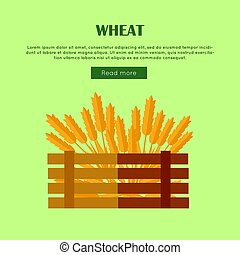Wheat Concept Web Banner in Flat Design.