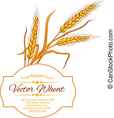 Wheat ear card.