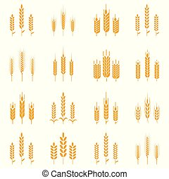Wheat ear symbols for logo design.