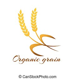 Wheat ear symbols for logo design. Agriculture grain,...