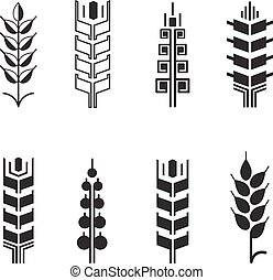 Wheat ear symbols for logo icon set