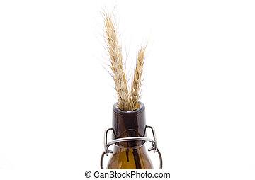 Wheat ear   - Wheat ear in glass bottle on white background
