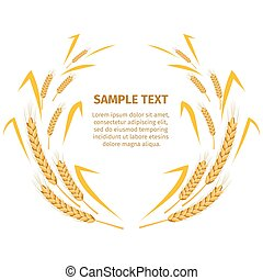 Wheat Ears around Your Text Sample on White - Wheat ears...