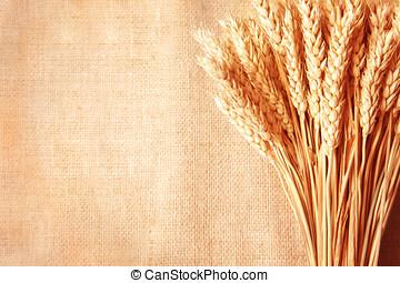 Wheat ears border on burlap background - Wheat ears border...