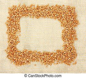 Wheat ears border