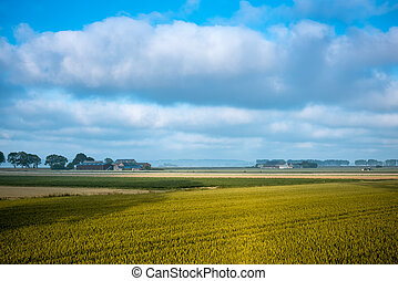 wheat field and farm in autumn, France
