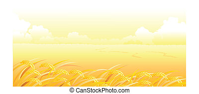 Wheat Field and landscape