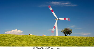Wheat field and wind turbine