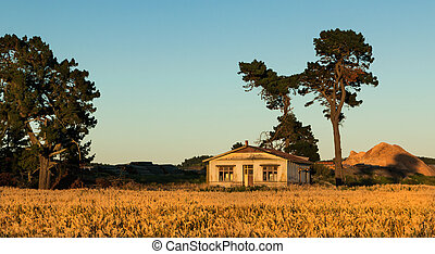 Wheat Field House