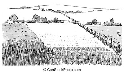 Wheat Field pen-and-ink drawing