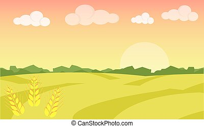 Wheat field ripe grow, agriculture. Farm landscape. Farm landscape illustration. Field wheat background. Farm sunrise background. Vector illustration