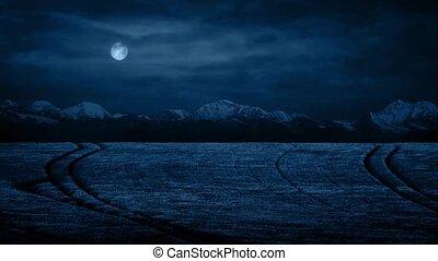 Wheat Field Under Moon At Night
