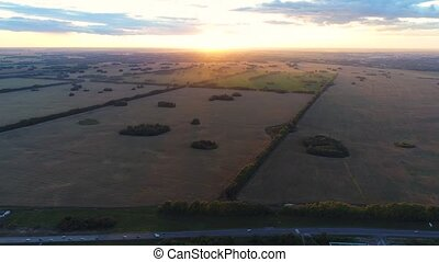 Wheat fields. Beautiful scenery from a height in sunset time. Shooting at the drone.