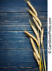 Golden wheat on navy blue rustic wooden board frame