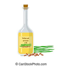 Wheat germ oil in glass bottle with natural ingredient. Liquid extracted from kernel vector illustration. Organic fresh product near packaging.
