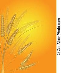 Wheat Grain Field Illustration