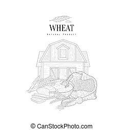 Wheat Grain, Flour And Farm Hand Drawn Realistic Sketch