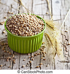 wheat grain in bowl and ears