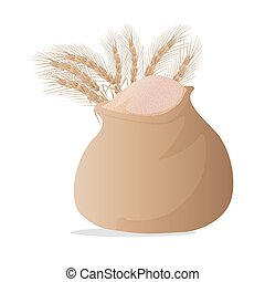 wheat grain isolated on bag white background