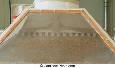 Wheat grains are cleaning and sieving by vibration, modern...