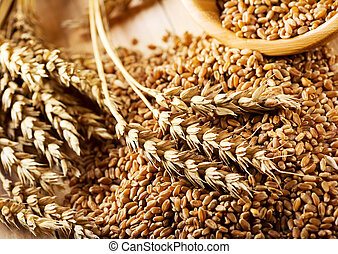 wheat grains on wooden table