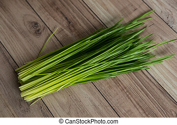 Wheat grass - Fresh wheat grass ready for juice.
