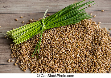 Wheat grass - Fresh wheat grass and seed.