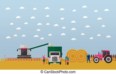Wheat harvesting, combine harvester, tractor