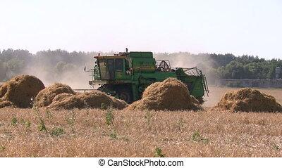 Wheat harvesting shearers 2