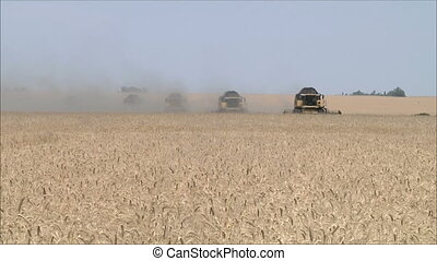 Wheat harvesting shearers 5