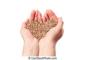 Wheat Heart in Hand