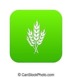 Wheat icon green