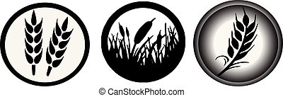 wheat icon on white background