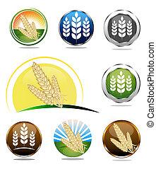 Wheat icons