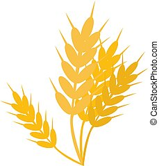 Wheat, illustration, vector on white background.