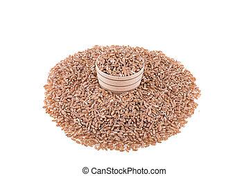 Wheat isolated on white background.
