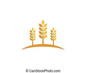 wheat Logo