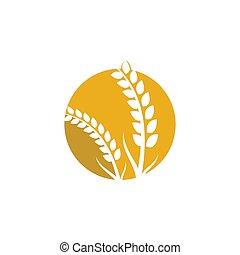 Wheat logo vector icon illustration