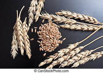 Wheat on black