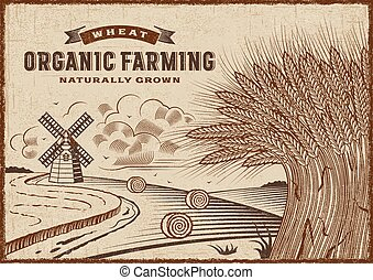Wheat Organic Farming Landscape