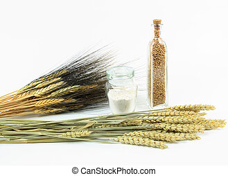 Wheat plants and products.