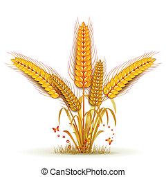 Wheat sheaf arrangement